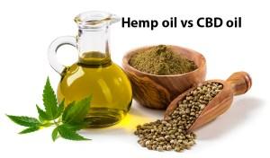 Hemp oil n a glass jar. Is hemp oil the same as CBD oil? Buy cbd hemp oil in hawaii.