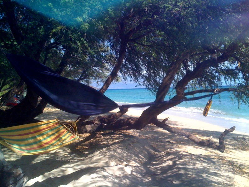 Camping with hammocks in Maui