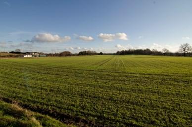 Maulden Farmland