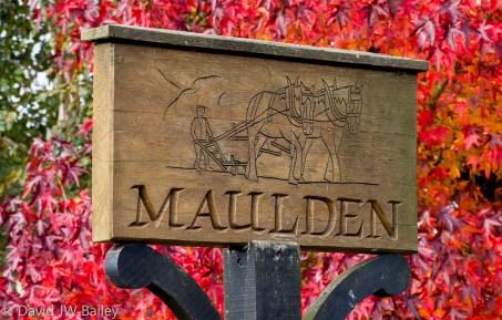 Maulden Village red autumn