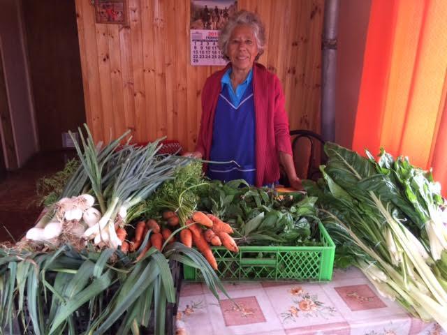 Huertas a Deo: Alimentación saludable a la puerta de tu casa