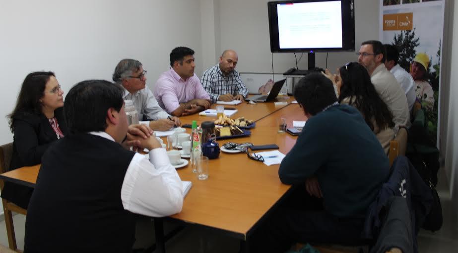Autoridades del Maule conformaron Comité Interministerial de Leña y sus Derivados