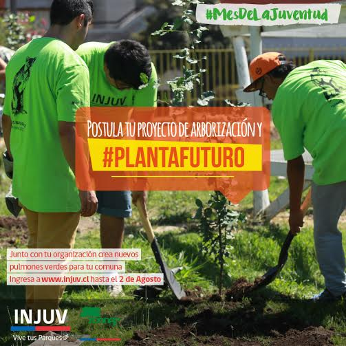 INJUV y CONAF financian proyectos juveniles de arborización comunitaria