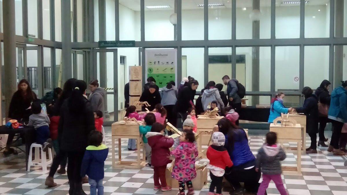 Invitan a escolares del Maule sur a visitar la exposición Diminutos