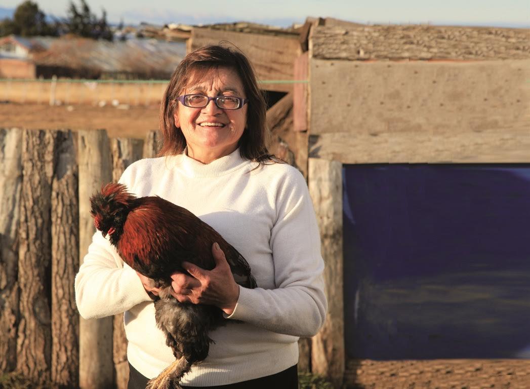 Sence abre postulaciones a 1.050 cupos +Capaz, Mujer Emprendedora en 30 comunas de la región del Maule