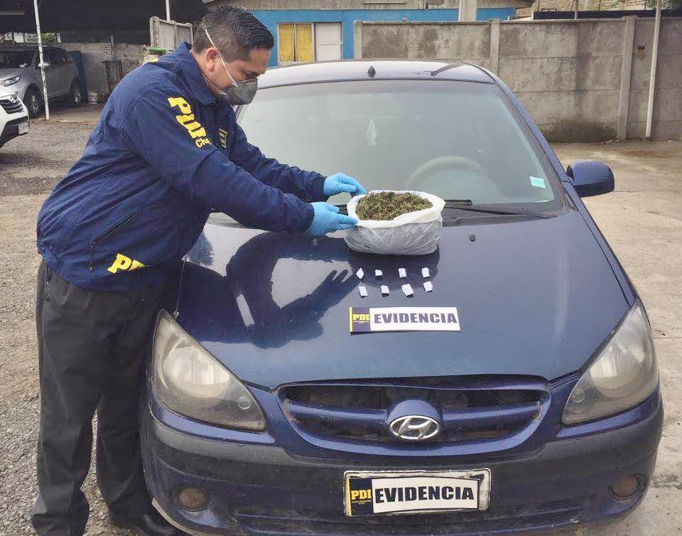 PDI Parral incautó medio kilo de cannabis