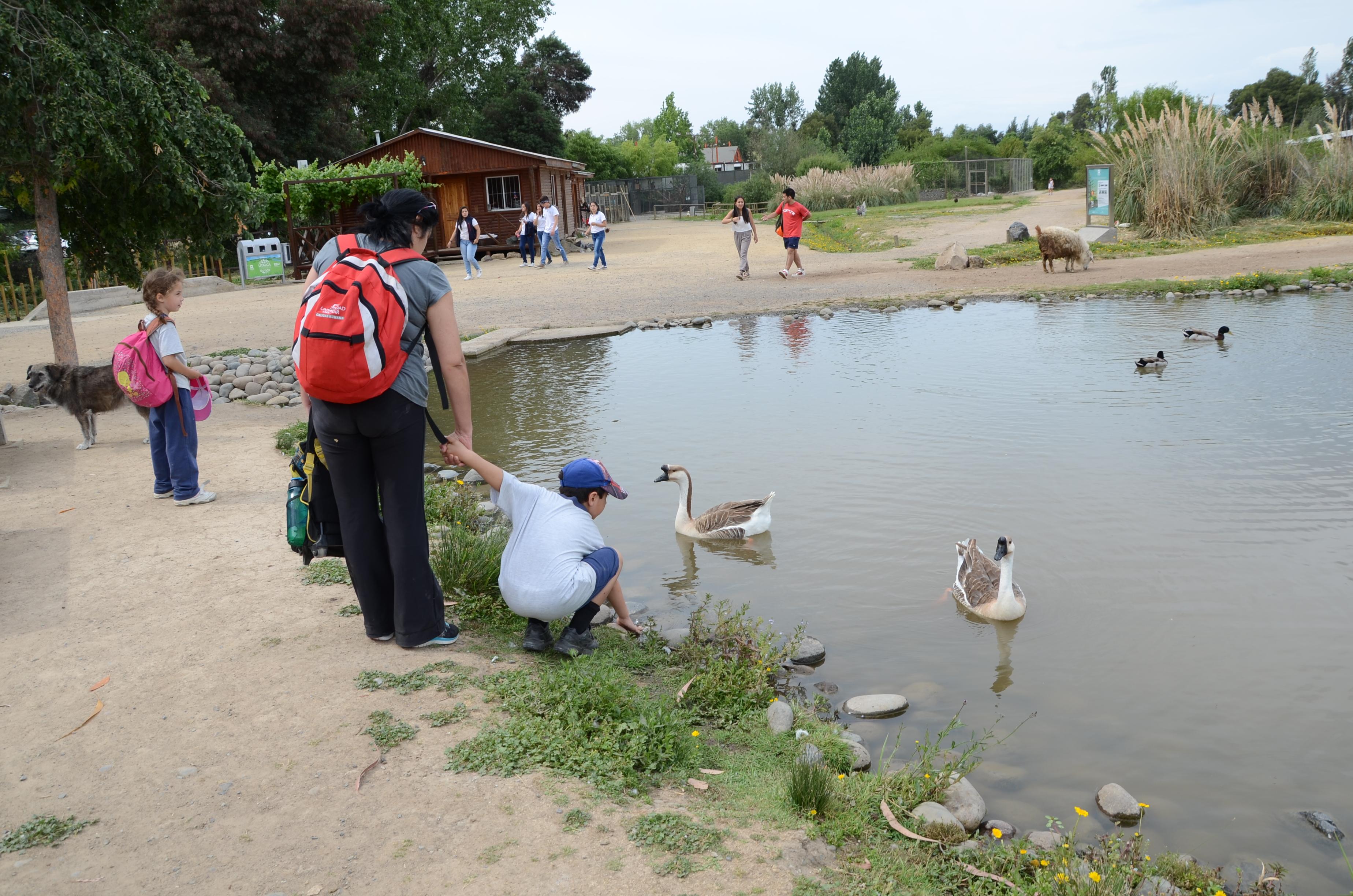 Trip Advisor recomienda la UTALCA a turistas que visitan el Maule en verano