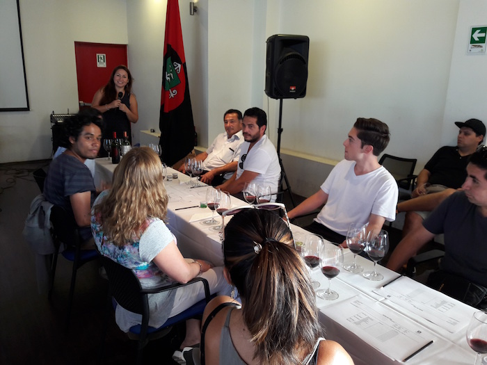 En Colchagua realizaron cursos de cata de vinos