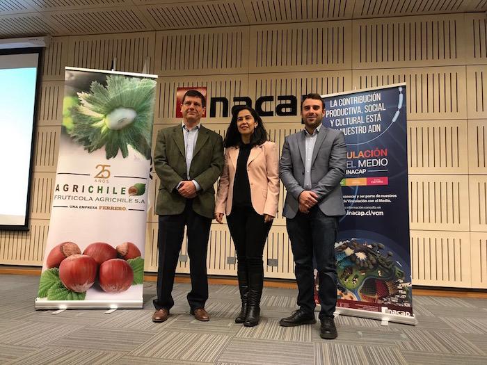 Agrichile e Inacap abordaron desarrollo de la industria del avellano europeo en Chile