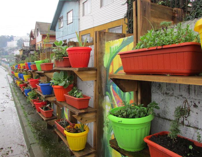 Fondo de Protección Ambiental permitió recuperar espacio verde en Barrio O'Higgins de Constitución