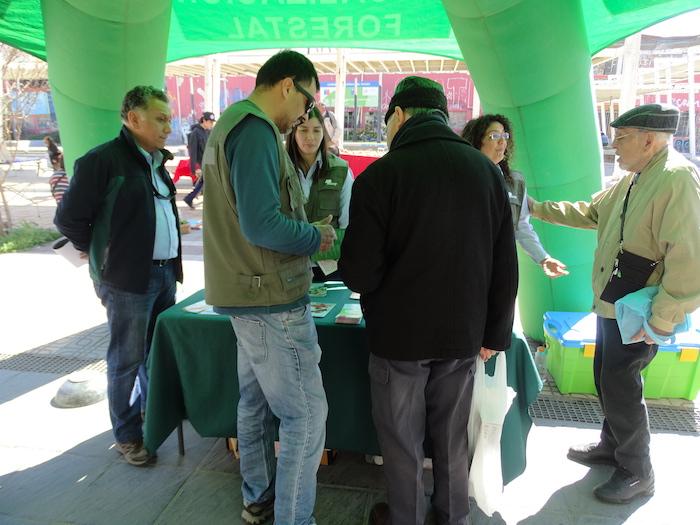 Conaf realizó operativo de fiscalización en la Región del Maule
