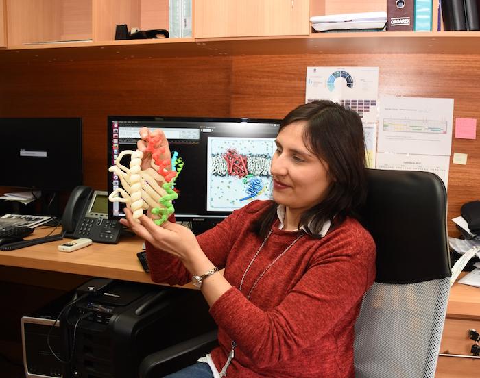 Investigación aporta a la lucha contra enfermedades neuronales y endocrinas