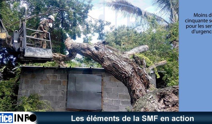 Les éléments de la SMF en action