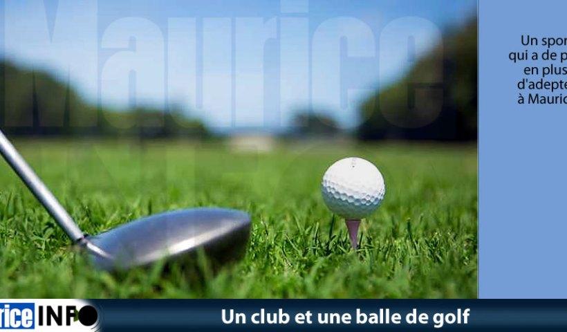 Un club et une balle de golf