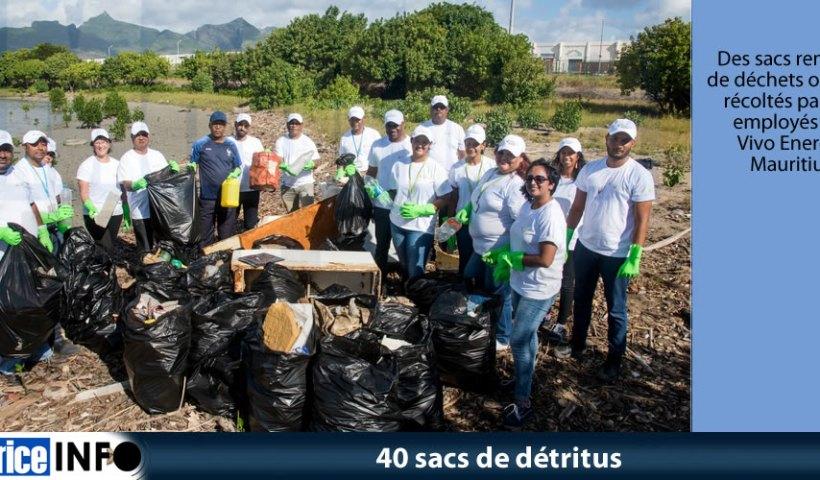 40 sacs de détritus