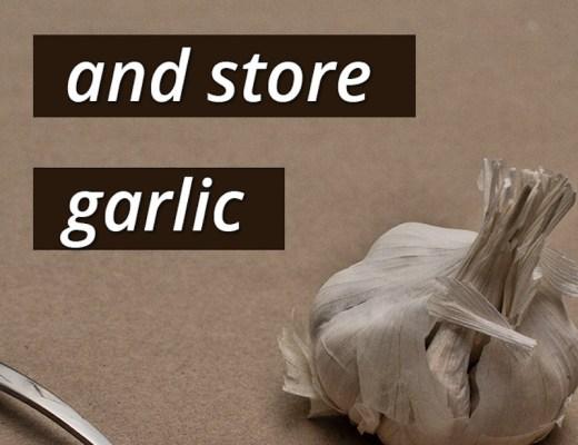 mince store garlic