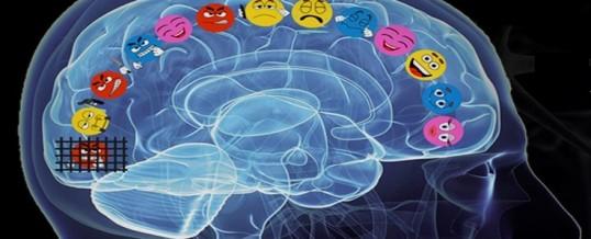 Life: emozioni & società, cosa sono e come funzionano gli stili emotivi di Davidson, come influiscono sulle scelte politiche…