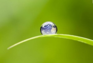 fondo crescita sostenibile