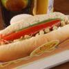 Dog Xadrez Chips Burger