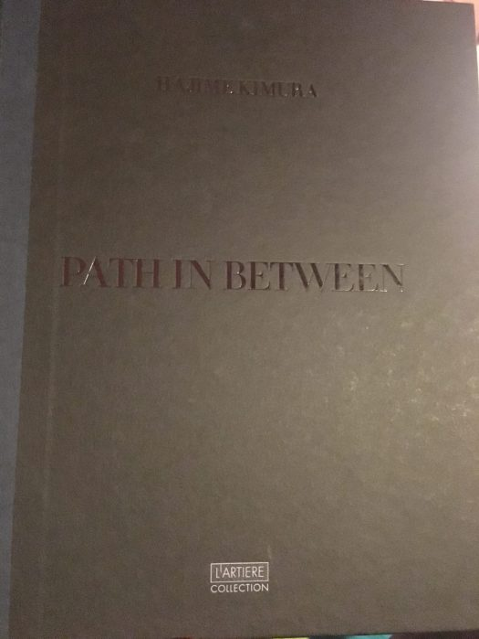 Path in Between Book Cover