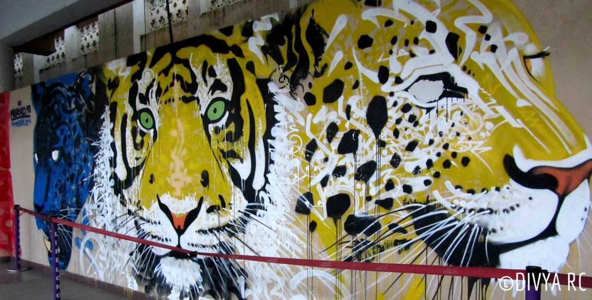 Bengaluru street art also showcases see excellent international artists like Marko 93