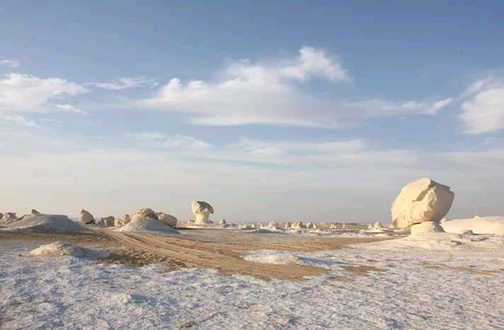 white desert is near farafra