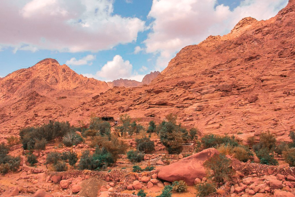 This is the essence of the Sinai Bedouins