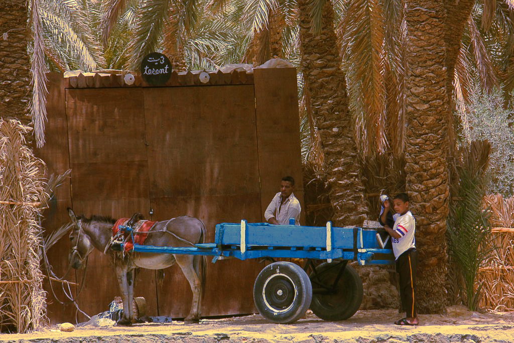Locals near Cleopatra's Bath in Siwa to be seen in Siwa travel