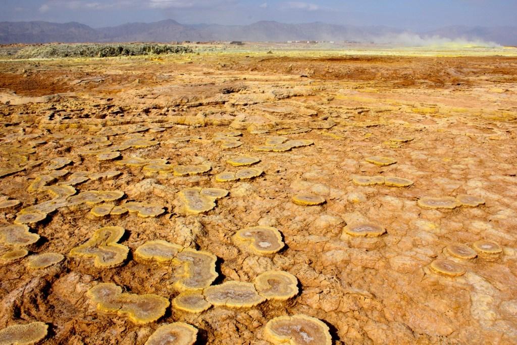Broad fungus-like mineral deposits in the Danakil Depression.