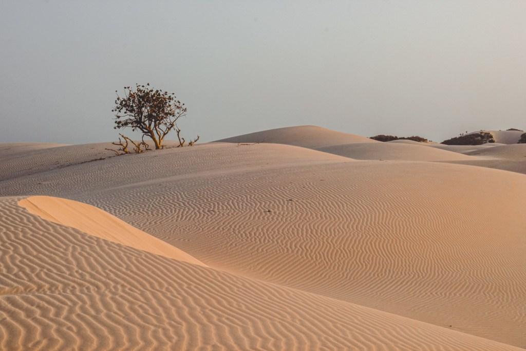 sand dunes of zahak