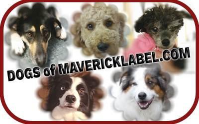 Dogs of MaverickLabel, Part 2