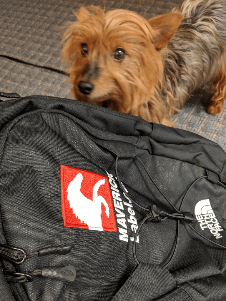 August (QA) is pretty sure there's treats in that backpack