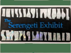 Animal design - Serengeti Exhibit label with zebra stripes