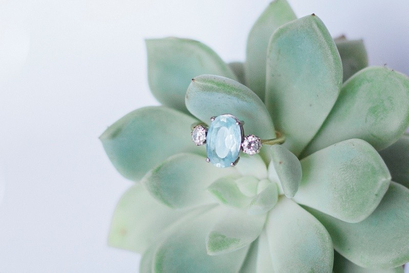 Maxeen Kim Photography, Engagement Ring, Succulent