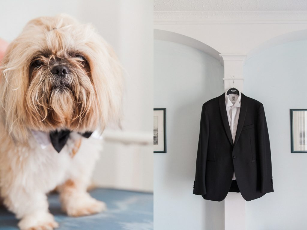 Couples Shih Tzu dog in a bowtie and the grooms suit jacket