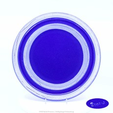 Pacific Pottery Hostessware Decorated 2007 613 Dinner Plate Pacblue