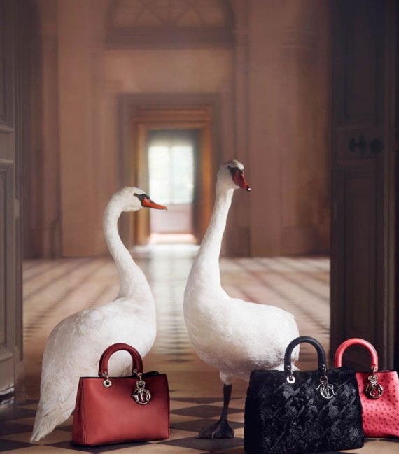 10 dior pub noel christmas 2012 An exceptional Christmas par Dior : Campagne Noel 2012