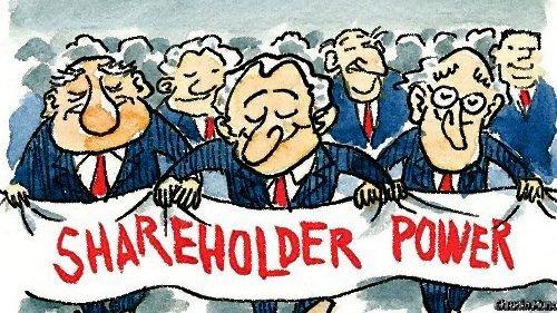 Teori Shareholder