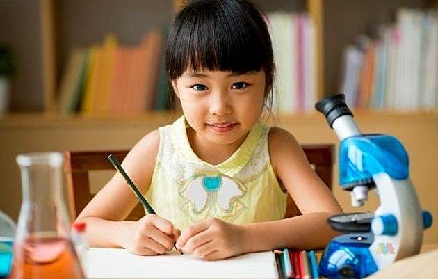 Tujuan dan Fungsi Pendidikan Formal