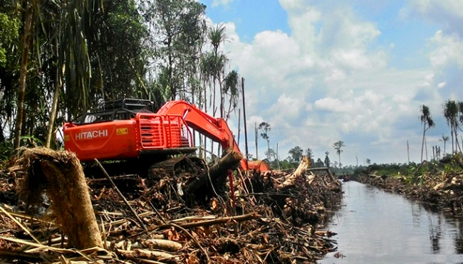 Penyebab Kerusakan Lingkungan