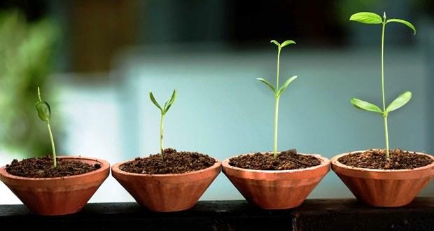 Tips-Memilih-Nama-Startup-Bisnis