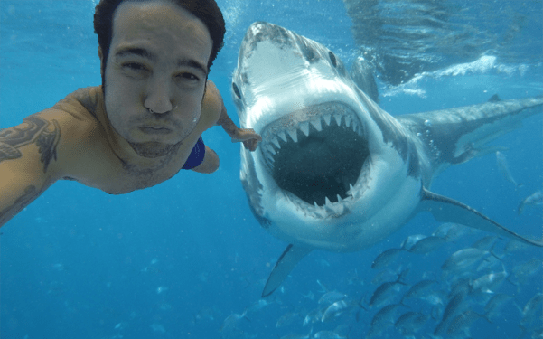 bahaya aktifitas selfie