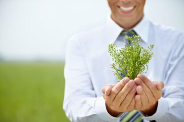 Menciptakan Bisnis Ramah Lingkungan
