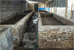 Kolam Cacing Tanah