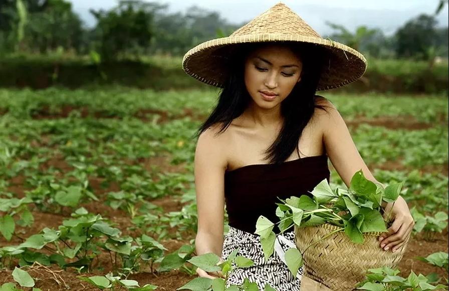 10 Peluang Usaha Di Desa Yang Menjanjikan Dan Patut Dicoba