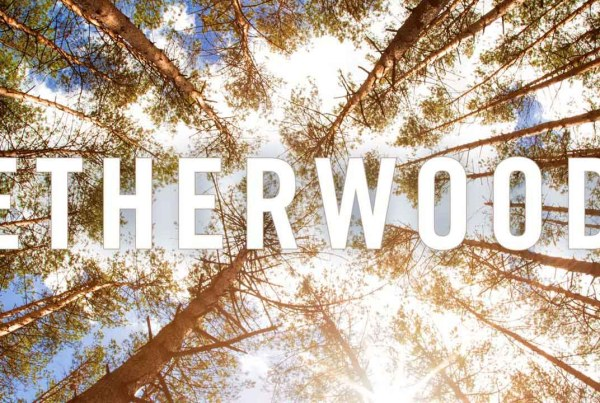 Etherwood – The Debut Album