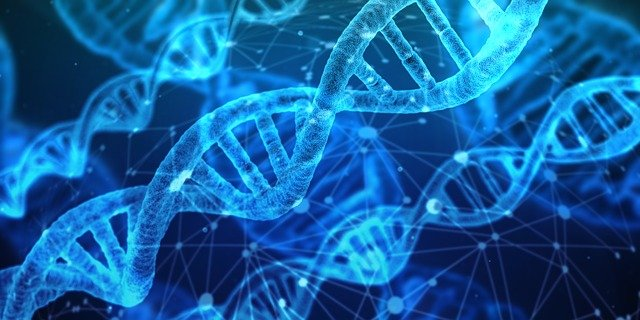 Free Photo Dna Network Research Chemistry Medical Biology