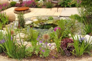 Inexpensive Home Landscaping