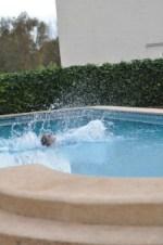splash in the water4
