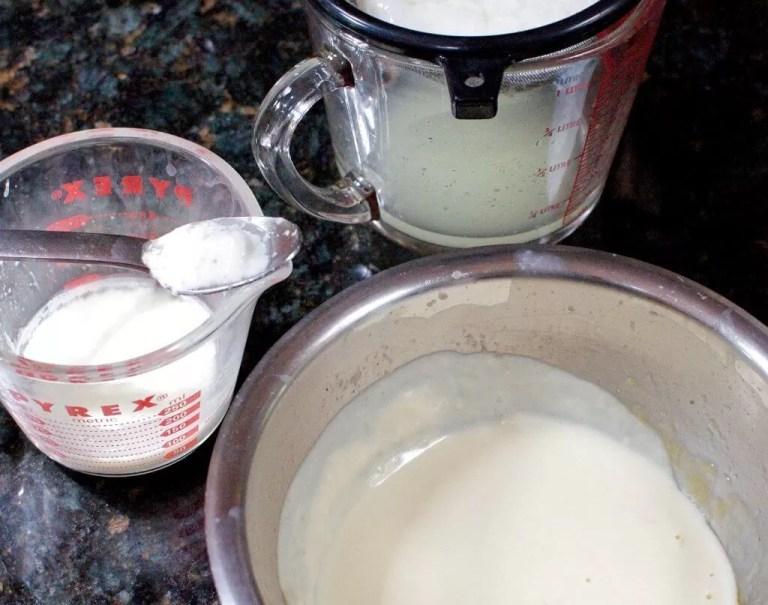 yaourt sans yaourtiere